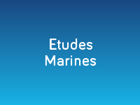 Etudes marines